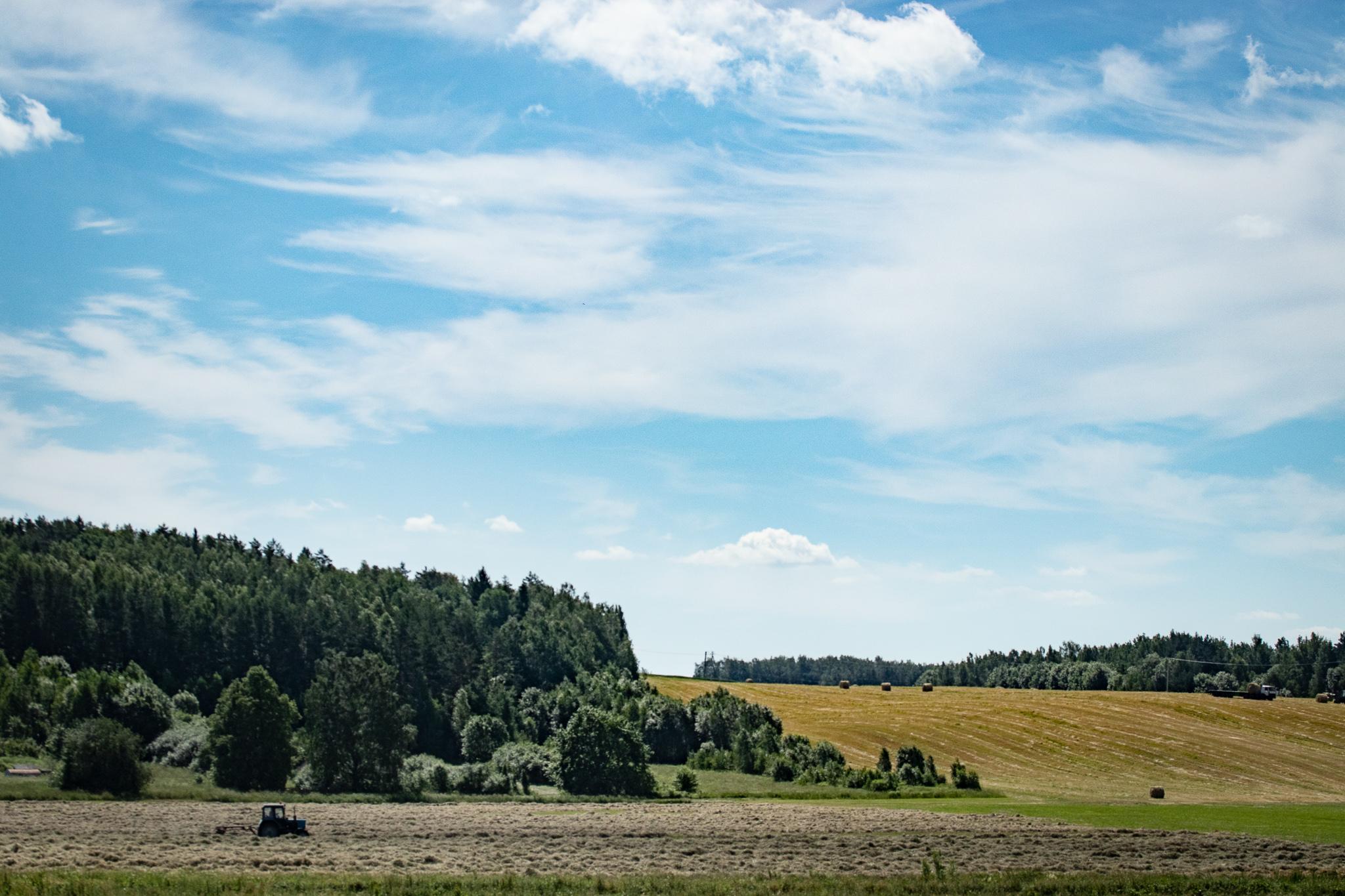 Сельский пейзаж, Беларусь
